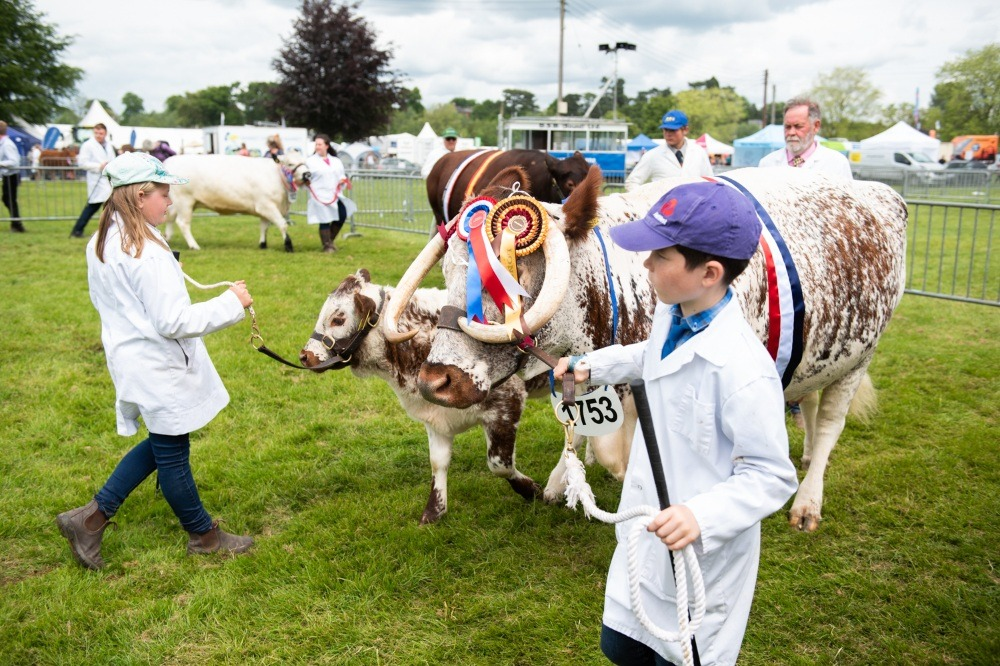 Plenty of entertainment for youngsters at 2021 show