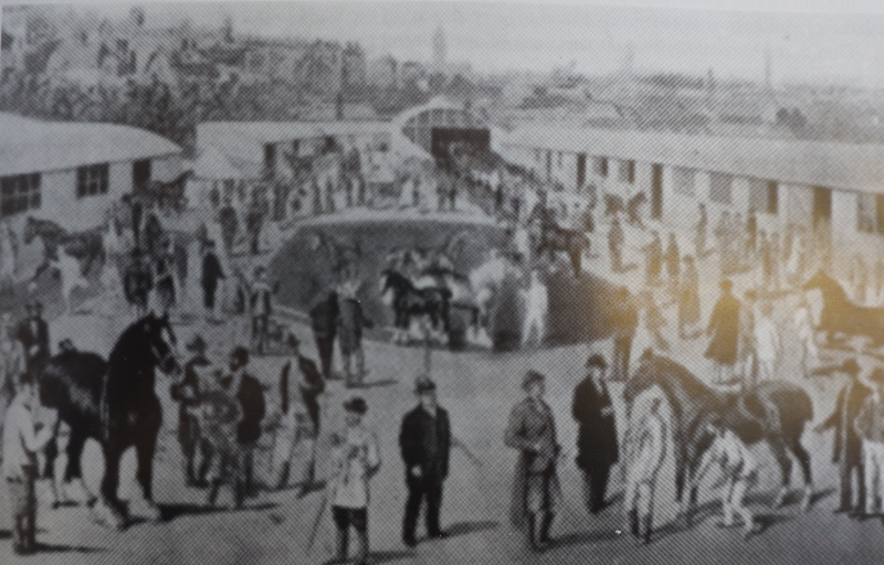 History Series 1 - The origins of the 145-year-old Shropshire County Show