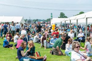 What's On at the County Show - The run down